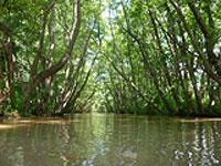 rivière Kerkinitis site d'échantillonnage en Grèce