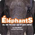 affiche de l'exposition éléphants
