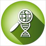 Biologie, génétique et biominéralisation