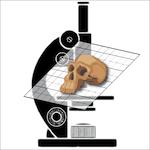 Imagerie et morphometrie (morphOptics)