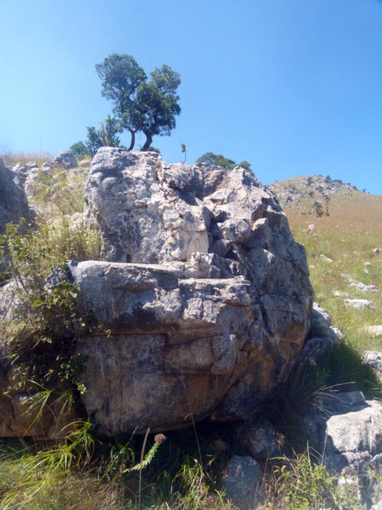 affleurement de la formation du Buck Reef Chert (Afrique du Sud)