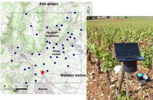 à gauche, carte du réseau de pluviomètres utilisé dans l'étude et à droite, photo d'un pluviomètre dans les vignes (crédits B. Pauthier)